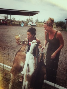 Feeding goats with my bestie, Sharaya, at the Surfing Goat Dairy